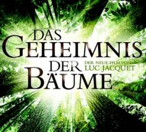 Das-Geheimnis-der-Baeume