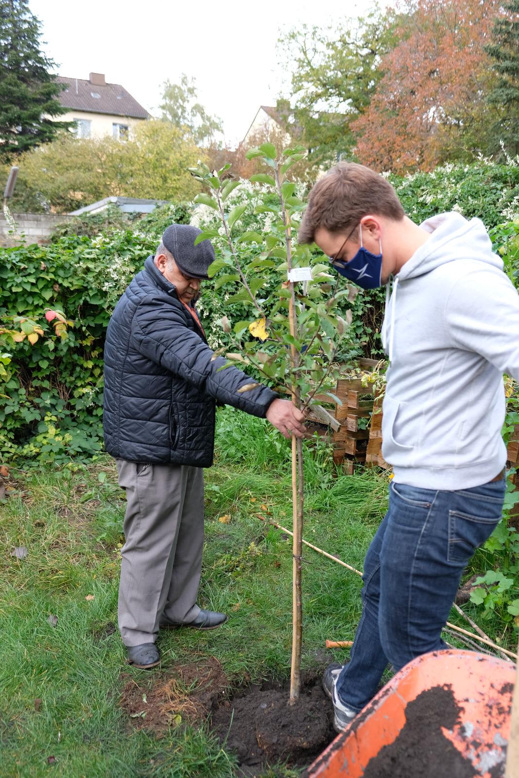 2020-10-24_Feidikforum_Apfelbaumpflanzung