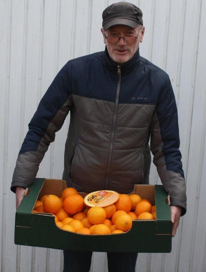 orangen-foto-02